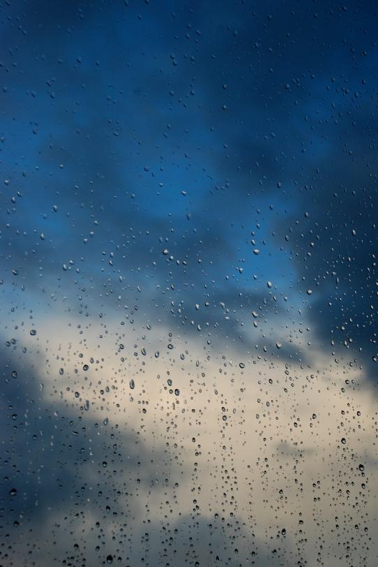 ©P. Romero: Rain (2014)