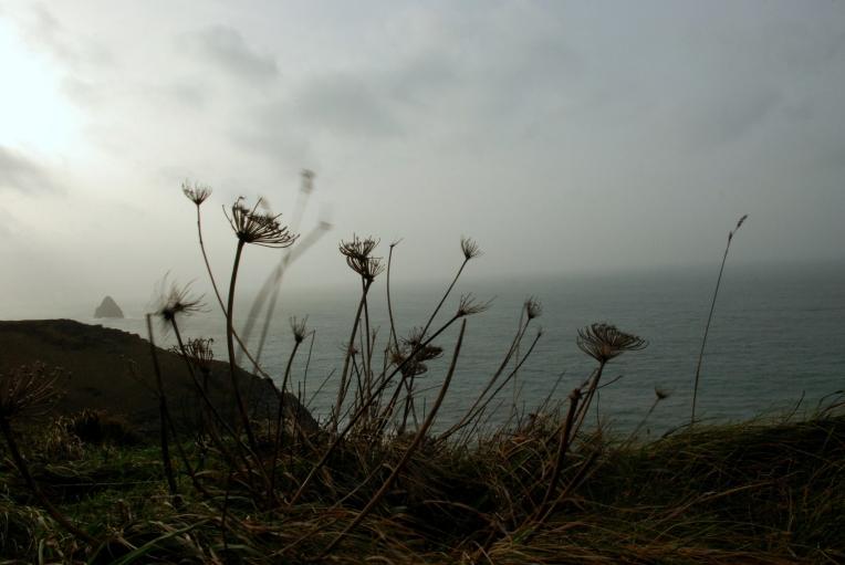 P.Romero: Cornwall, UK (2015)