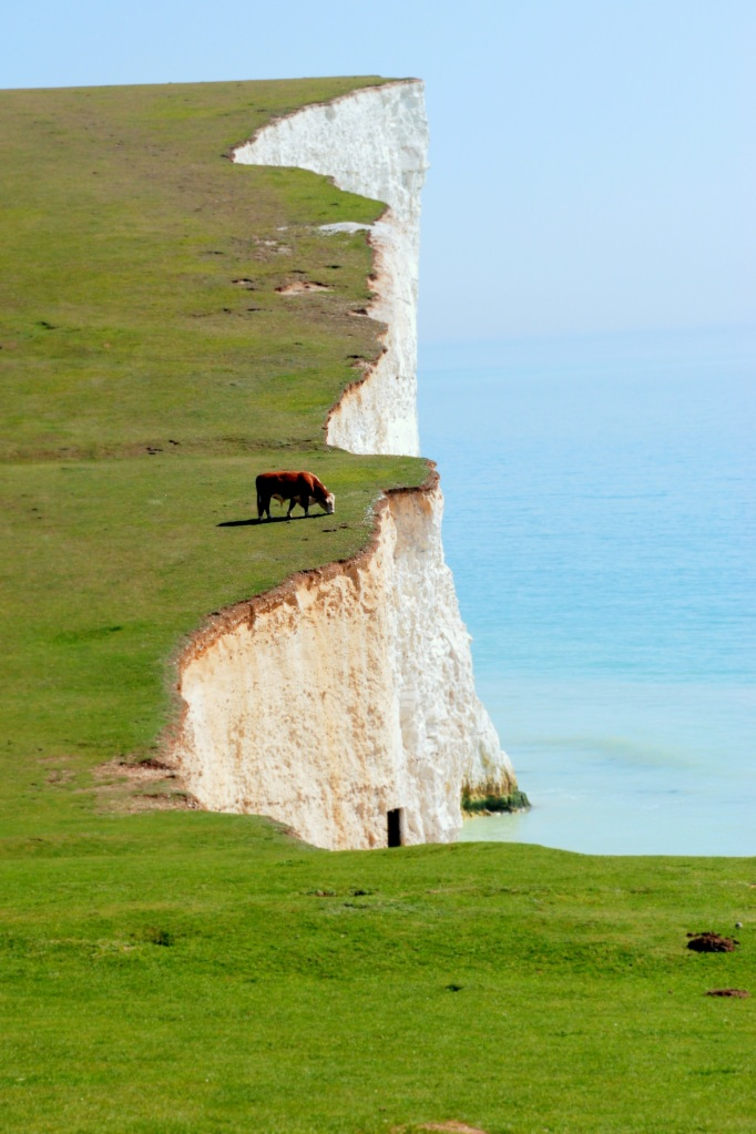 ©P.Romero: Seven Sisters. The White Cliffs of Dover, UK (2011)