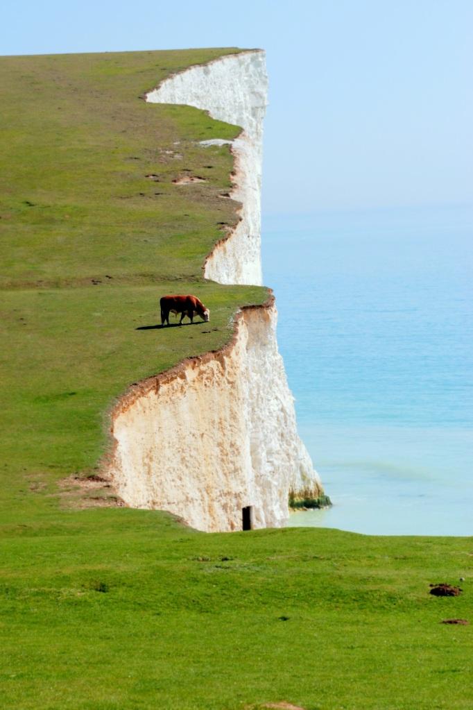 ©P.Romero: Seven Sisters. The White Cliffs of Dover, UK (2011)