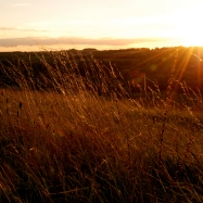 ©P.Romero: Late Summer Sunset. St. Catherine's Hill, Winchester, UK (2014)