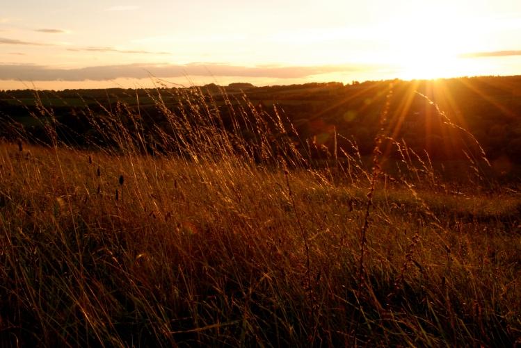 ©P.Romero: Late Summer Sunset. St. Catherine's Hill, Winchester, UK (2014)
