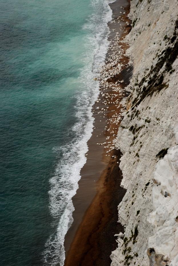 ©P.Romero: Isle of Wight, UK (2011)