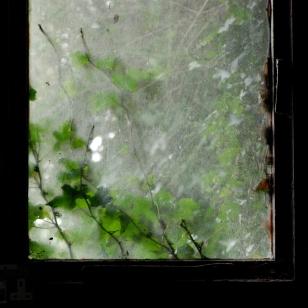 ©P.Romero: The outdoors, indoors. Winchester, UK (2018)